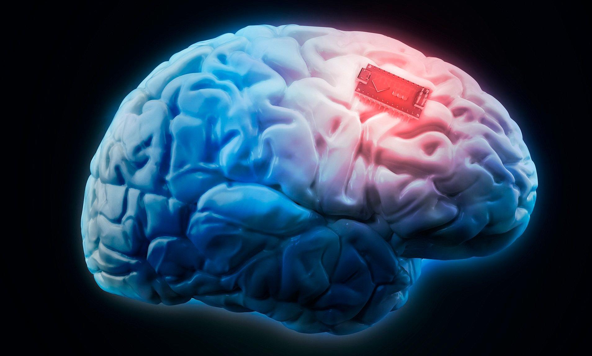 В России разрабатывают програму по вживлению чипов в человеческий мозг