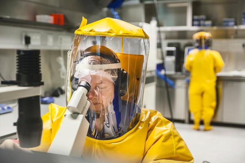 У людей обнаружен собачий коронавирус, но беспокоиться незачем