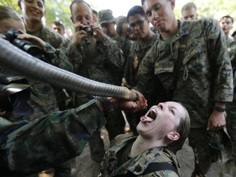 PETA подала жалобу генеральному инспектору ВМФ на военную традицию пить змеиную кровь