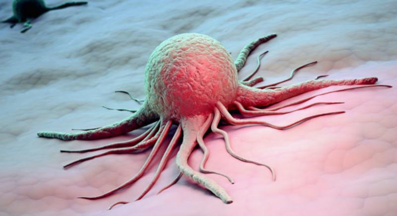 Канадские исследователи обнаружили «ахиллесову пяту» крупных раковых опухолей